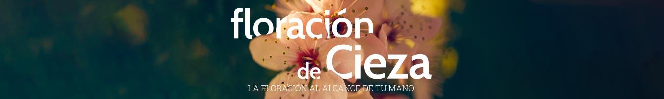 Floración de Cieza.