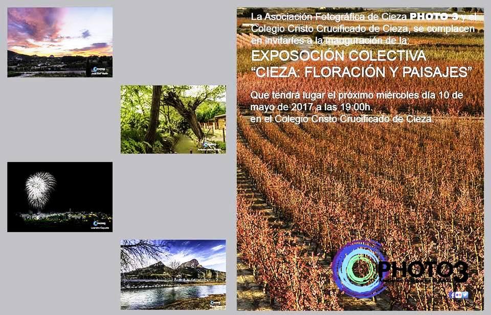 EXPOSICIÓN COLECTIVA 'CIEZA: FLORACIÓN Y PAÍSAJES'