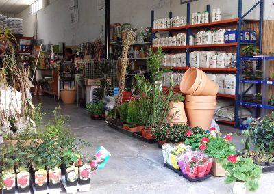 Fotografía de la Tienda de Piensos y Jardinería El Molino, Cieza.