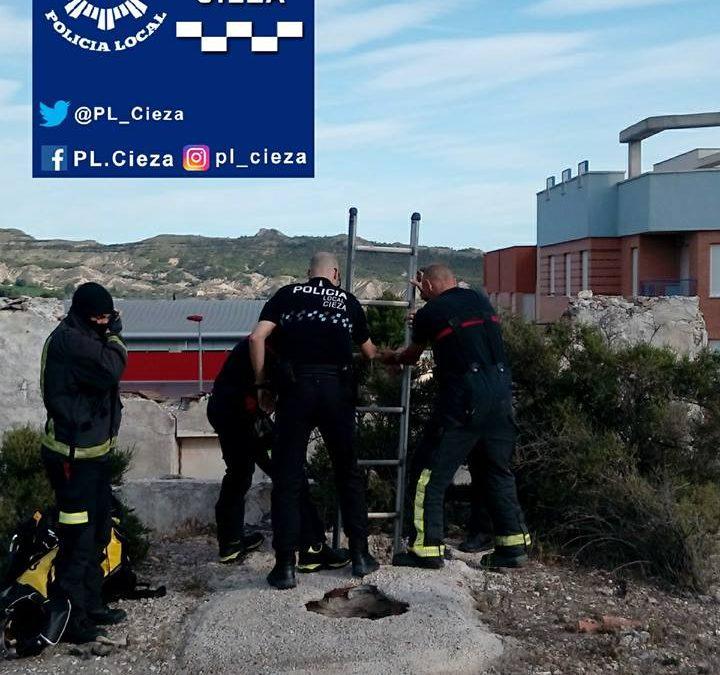 Bomberos y Policía rescatan a un gato atrapado en un pozo en Cieza