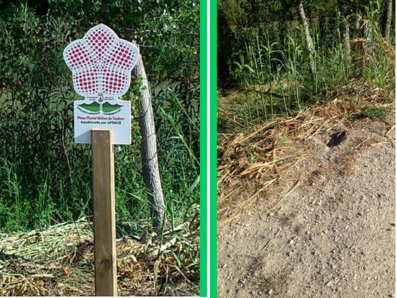 La Concejalía de Medio Ambiente denuncia la desaparición de una señal de una playa fluvial