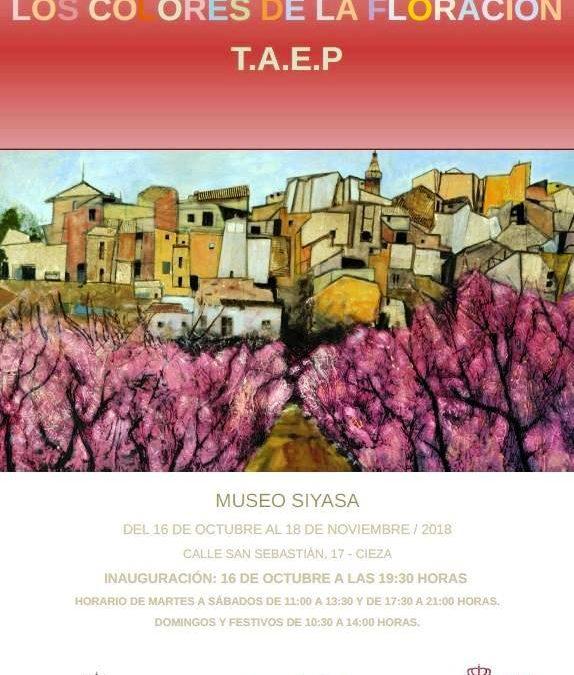 """Inauguración de la exposición """"Los colores de la floración"""" en el Museo de Siyâsa"""