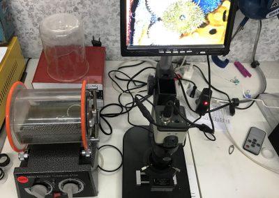 foto de parte del Equipo de trabajo de Joyería y Relojería Ruiz de Cieza.